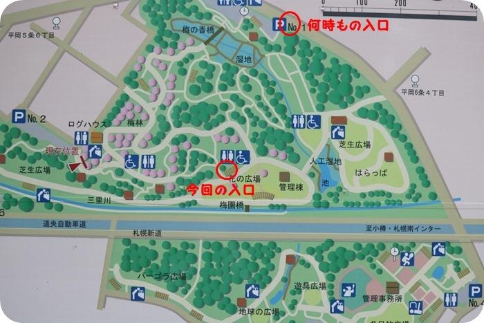 平岡公園('19・9・20)_f0146493_16574512.jpg