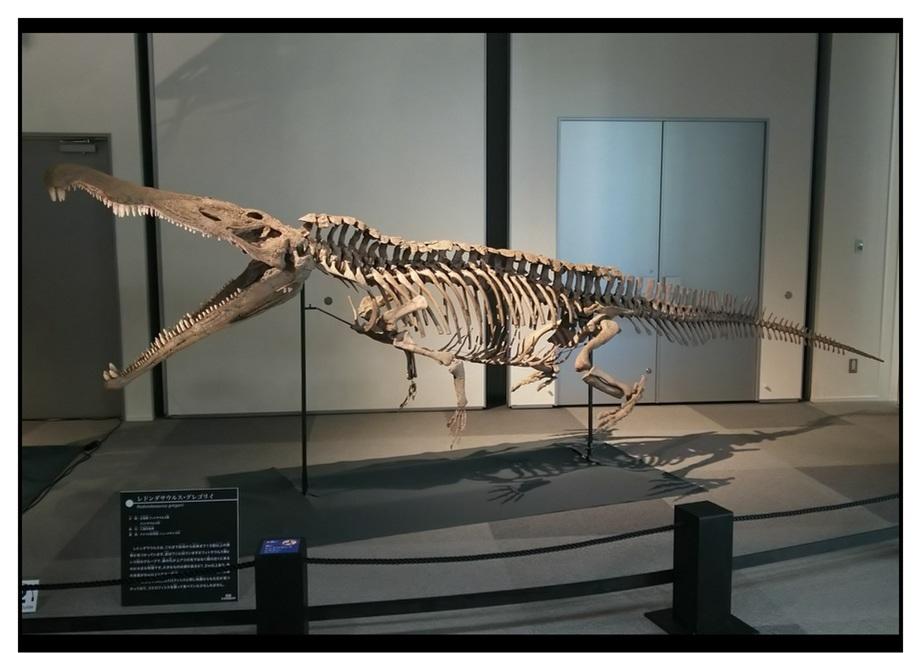 【漫画で雑記】青森大恐竜展2019は撮影可能!!_f0205396_14075636.jpg