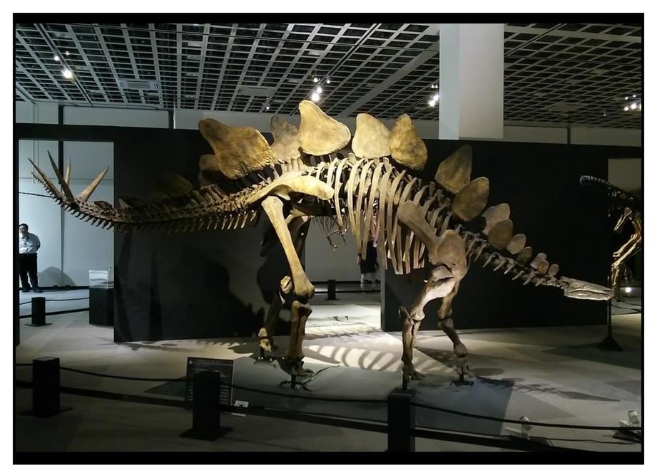 【漫画で雑記】青森大恐竜展2019は撮影可能!!_f0205396_14185286.jpg