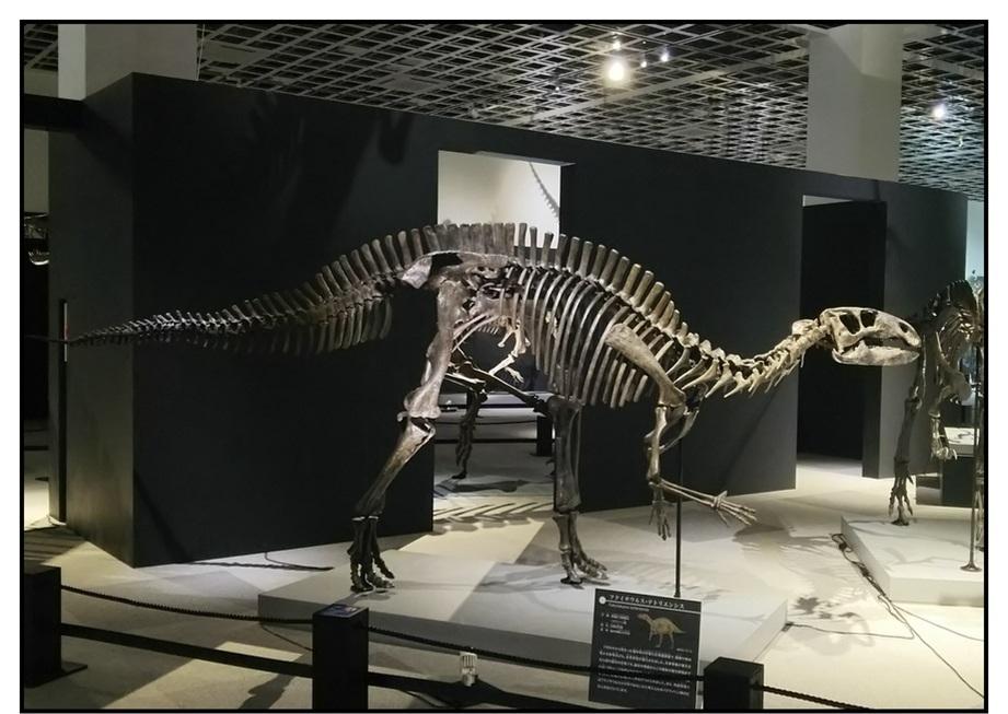 【漫画で雑記】青森大恐竜展2019は撮影可能!!_f0205396_14234469.jpg