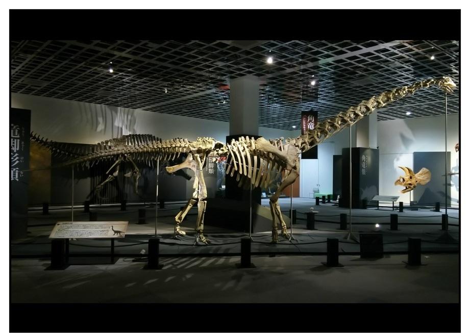 【漫画で雑記】青森大恐竜展2019は撮影可能!!_f0205396_14370726.jpg