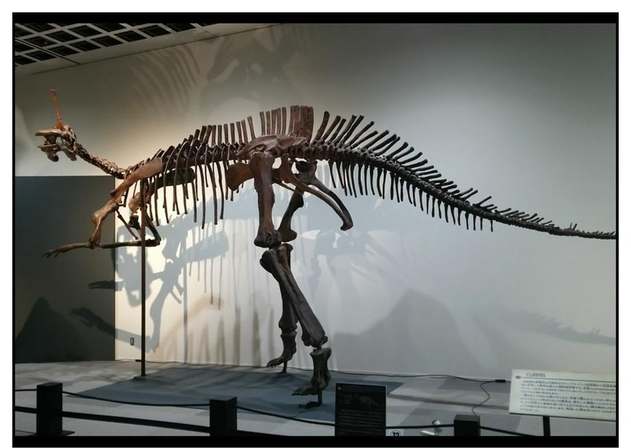 【漫画で雑記】青森大恐竜展2019は撮影可能!!_f0205396_14422388.jpg