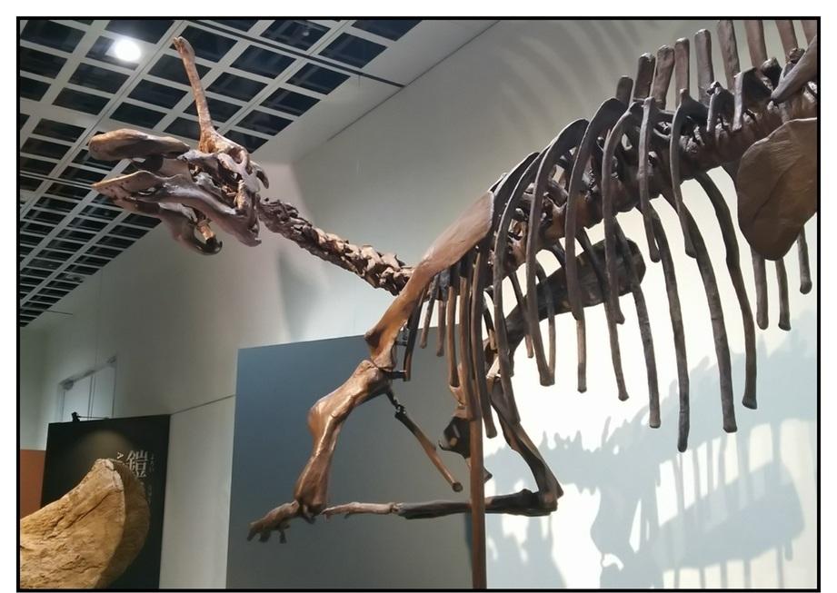 【漫画で雑記】青森大恐竜展2019は撮影可能!!_f0205396_14422741.jpg