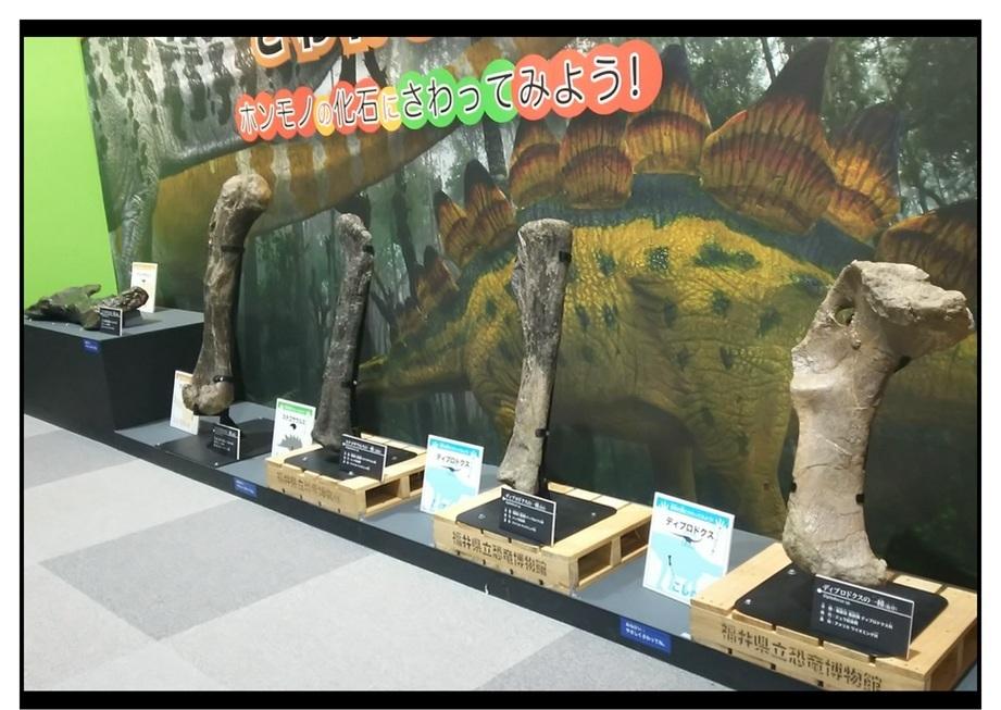 【漫画で雑記】青森大恐竜展2019は撮影可能!!_f0205396_14483715.jpg