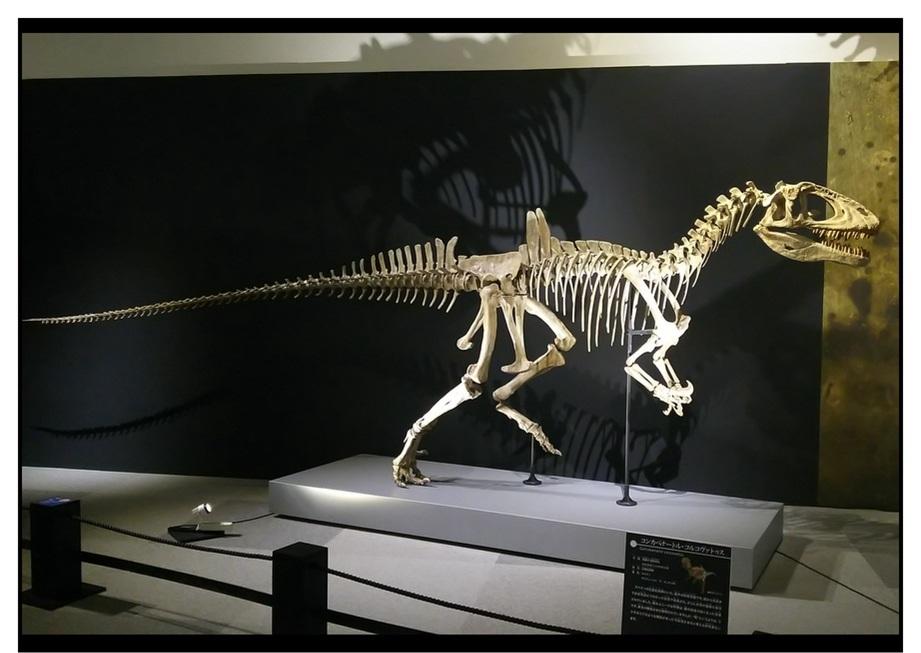 【漫画で雑記】青森大恐竜展2019は撮影可能!!_f0205396_14520086.jpg
