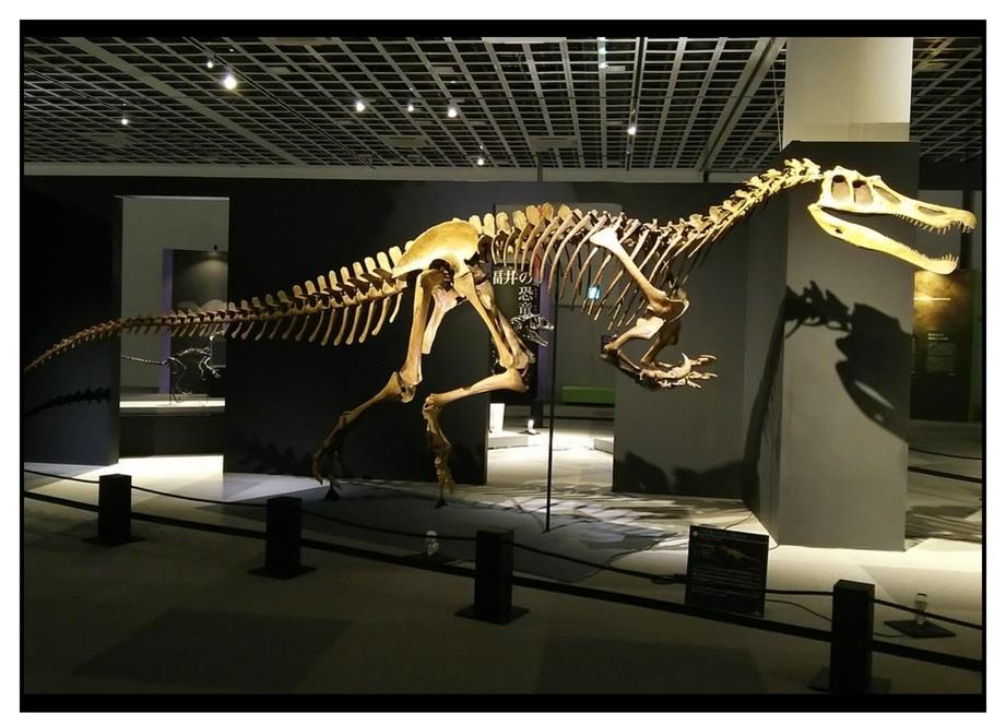 【漫画で雑記】青森大恐竜展2019は撮影可能!!_f0205396_14525852.jpg