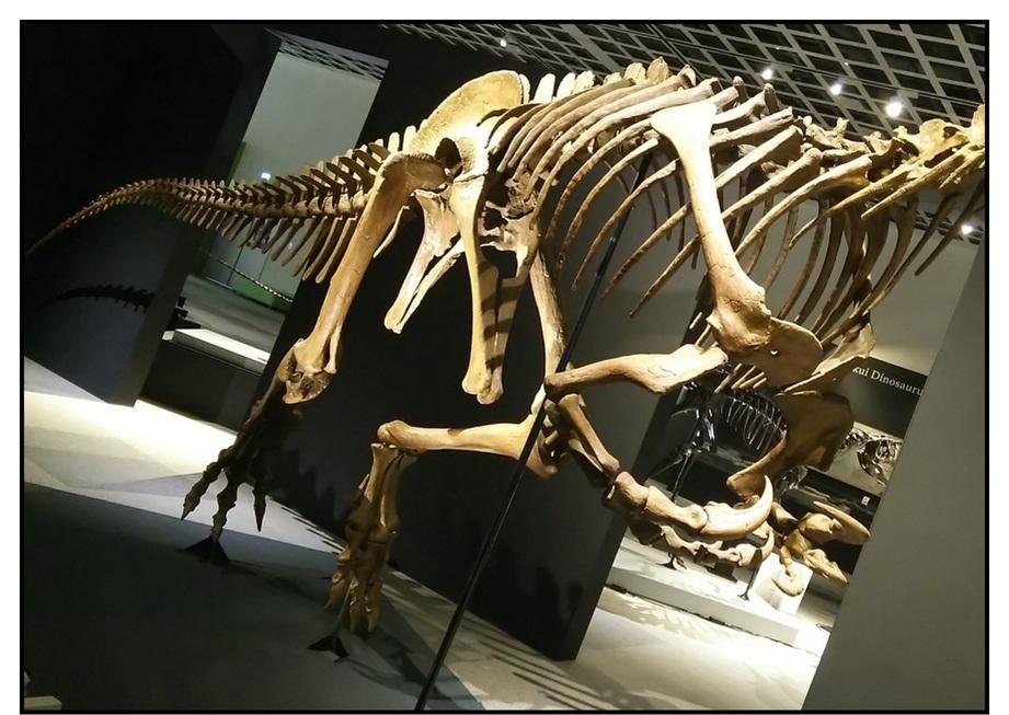 【漫画で雑記】青森大恐竜展2019は撮影可能!!_f0205396_14530943.jpg