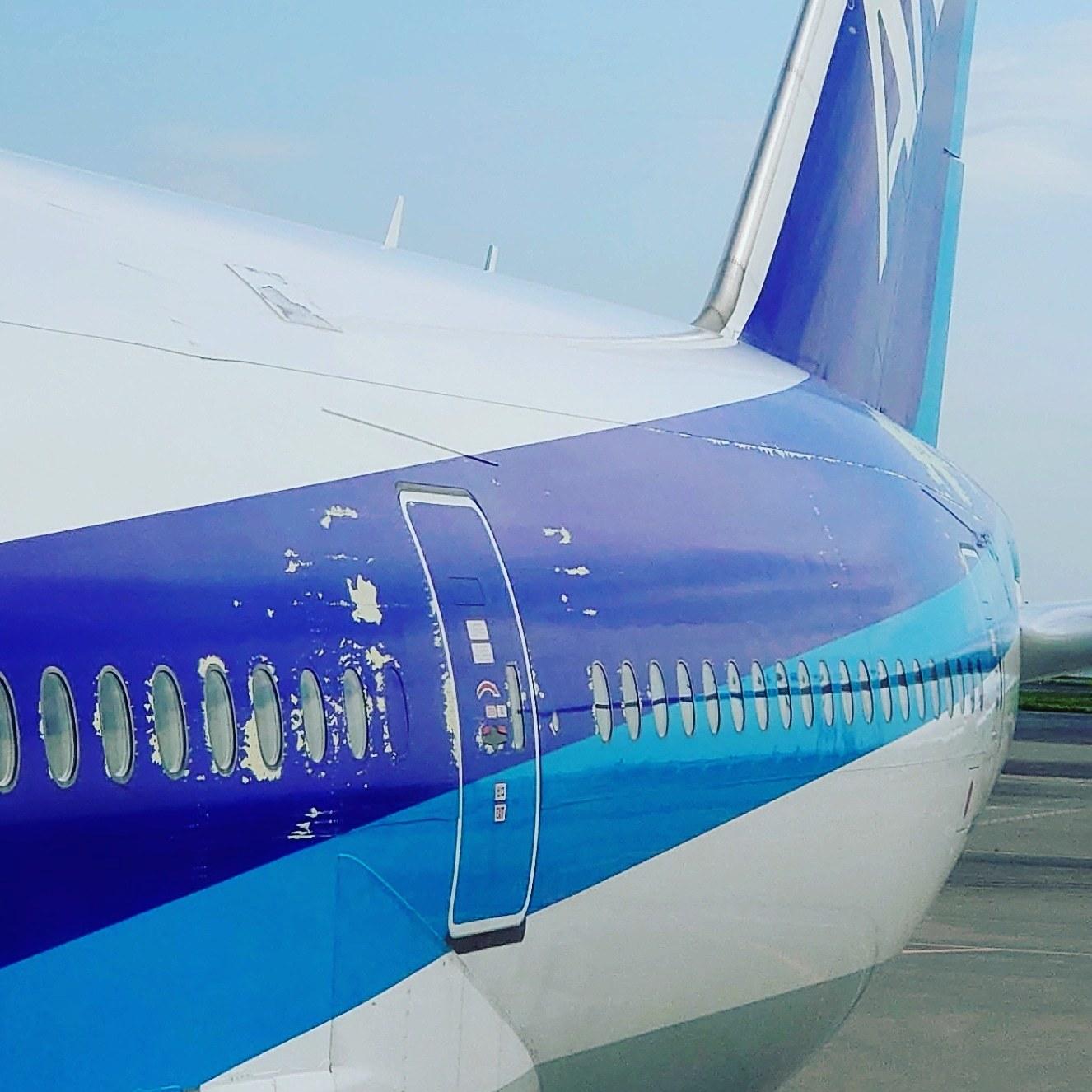 塗装の剥がれた飛行機_b0083801_08534243.jpg