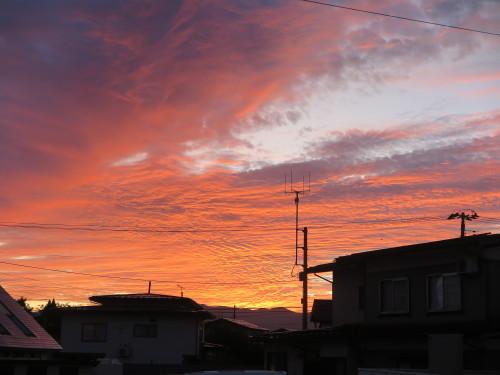 朝の散歩、2019.9.30_c0075701_05523450.jpg