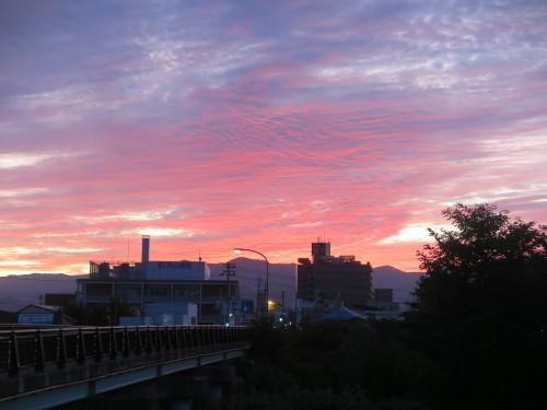 朝の散歩、2019.9.30_c0075701_05531166.jpg