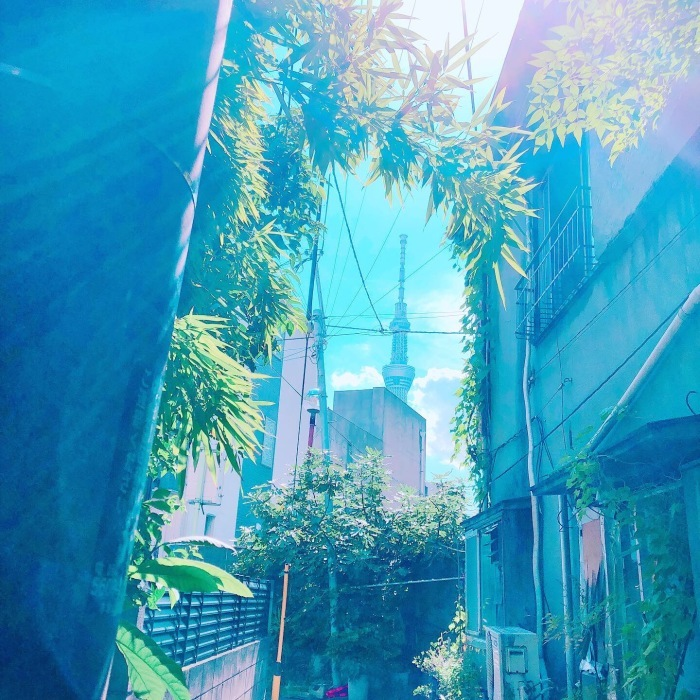 曳舟〜向島百花園〜隅田川_d0138811_08534626.jpeg