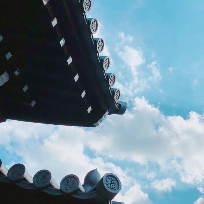 曳舟〜向島百花園〜隅田川_d0138811_08590723.jpeg