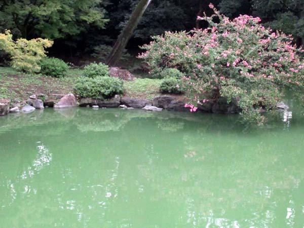 閑院宮邸跡 京都御苑_e0048413_21025016.jpg