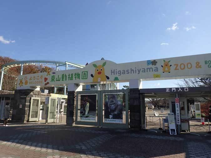 嗚呼、東山動植物園~オキとの再会(December 2018)_b0355317_21561179.jpg