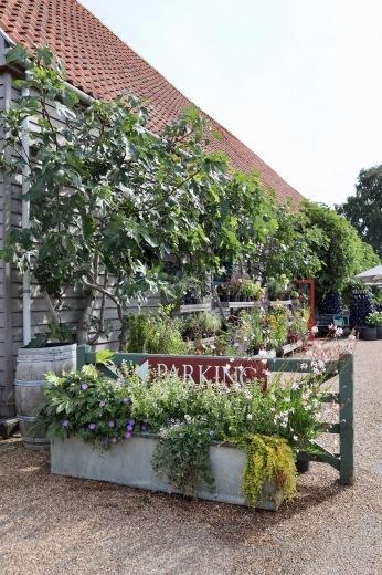 イギリスの旅3日目 ガーデンツアー 2日目 Wyken Vineyardsその1_e0194723_21034479.jpeg