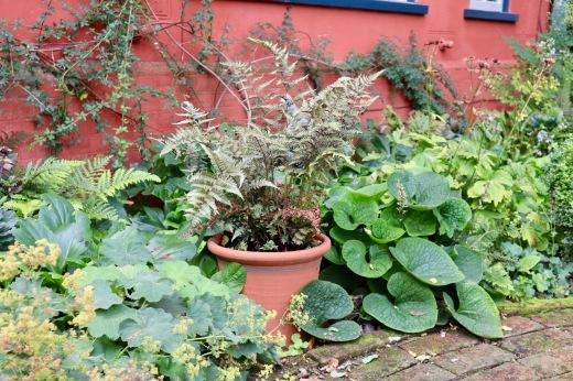 イギリスの旅3日目 ガーデンツアー 2日目 Wyken Vineyardsその1_e0194723_22154061.jpeg