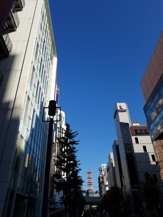 札幌テレビ塔。_d0164343_08311622.jpg