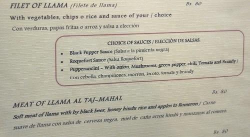 ラパスのレストランでリャマのフィレステーキ_c0030645_09503811.jpg