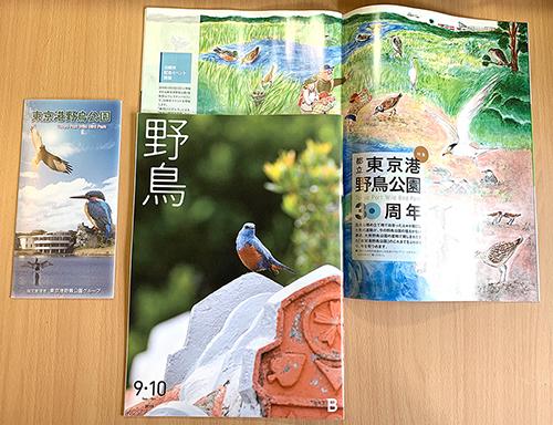 「野鳥」9.10月合併号、イラストご掲載_e0026053_14292709.jpg