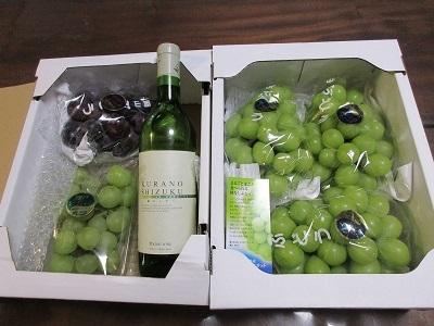 葡萄とワイン_f0006356_16211864.jpg