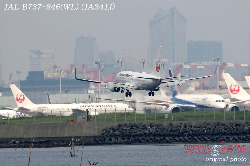 '19年 川崎・浮嶋公園レポート ・・・ JAL/JA341J_f0352866_2220327.jpg