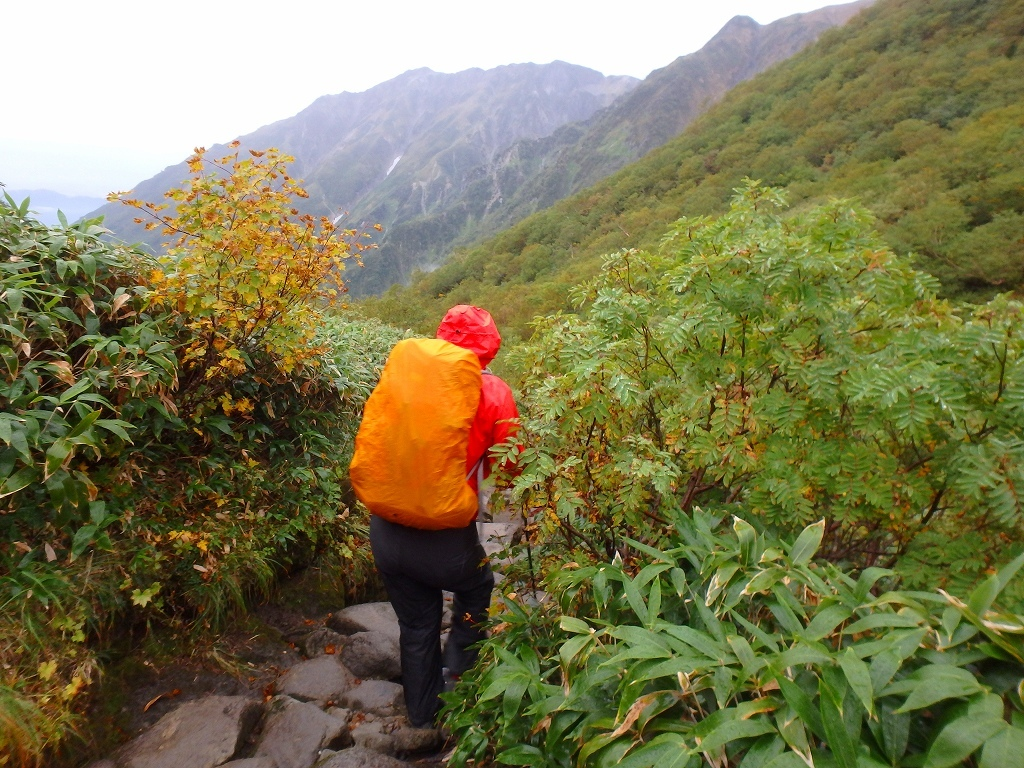 鏡平山荘から下山、2019.9.21_f0138096_22531074.jpg