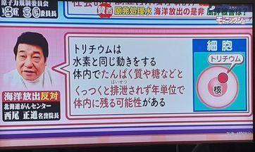 福島原発の放射能汚染水の海洋投棄を許してはならない!_d0174710_22320356.jpg