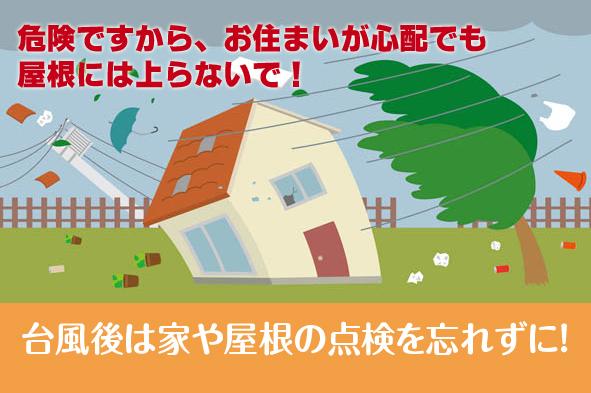 まだまだ暑い秋なのだ。・・・_c0157523_06410087.jpg