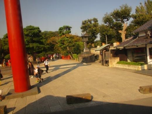 鎌倉       9月26日(木)_d0127634_07143191.jpg