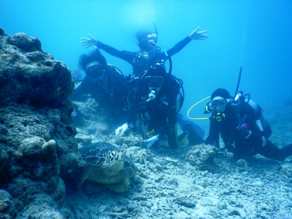 もう一度ウミガメに会いたいっ!(^^)!_a0189838_06180634.jpg