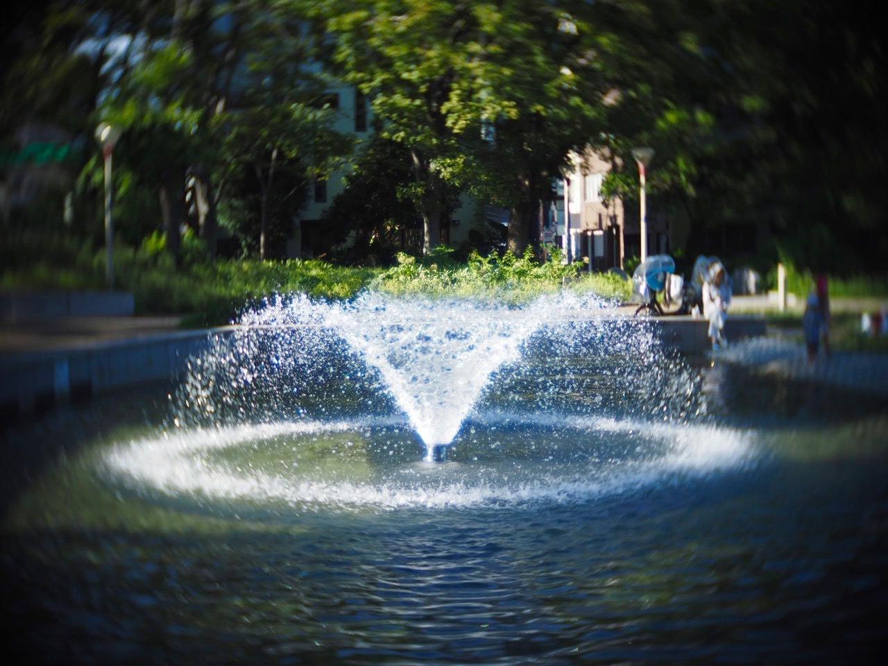 靱公園をグルグルレンズでさんぽ_f0135940_16510494.jpg