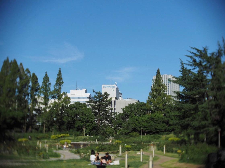 靱公園をグルグルレンズでさんぽ_f0135940_16511089.jpg