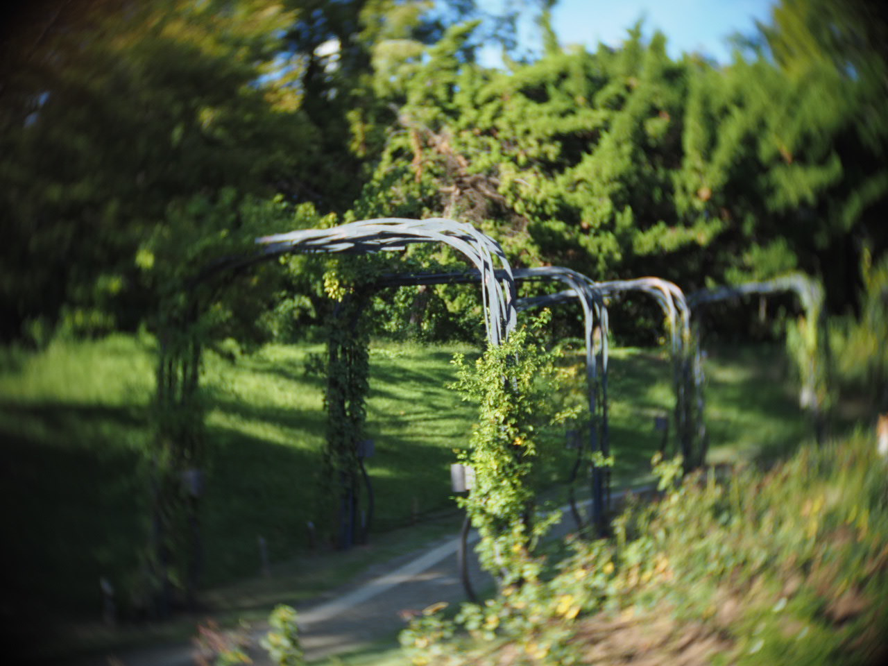 靱公園をグルグルレンズでさんぽ_f0135940_16512684.jpg