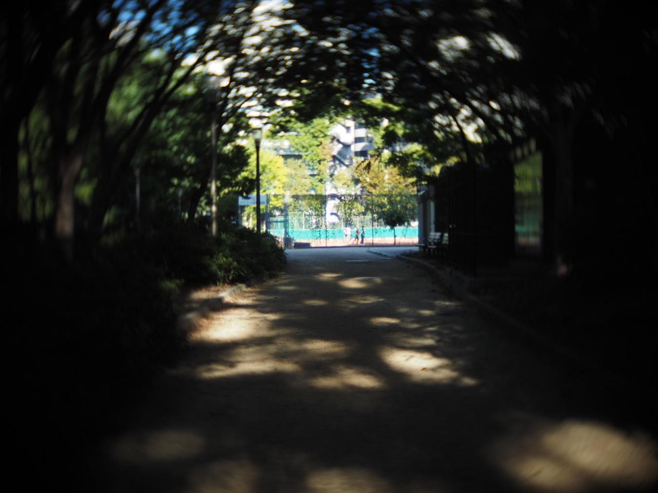 靱公園をグルグルレンズでさんぽ_f0135940_16513350.jpg