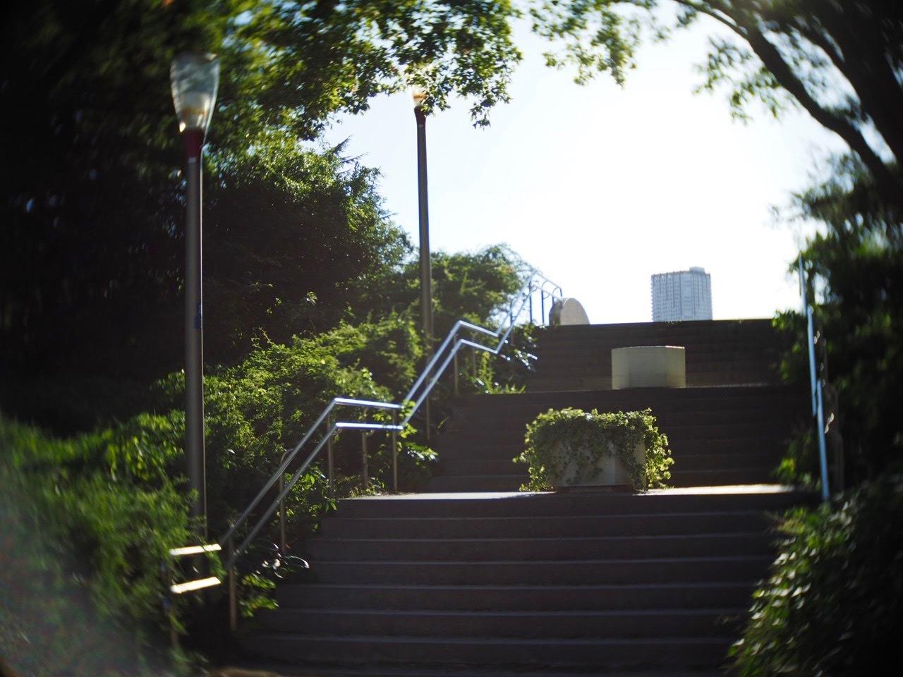靱公園をグルグルレンズでさんぽ_f0135940_16514189.jpg