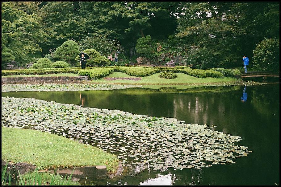 二の丸庭園 -2_b0340572_19022200.jpg