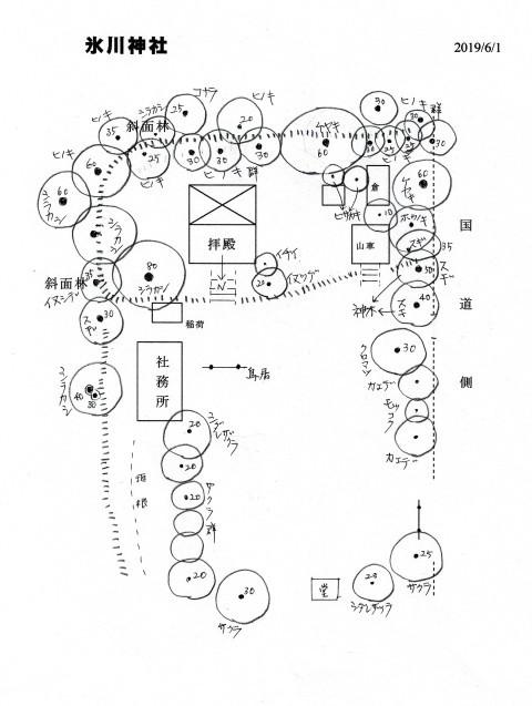 氷川神社_d0361999_10310303.jpg
