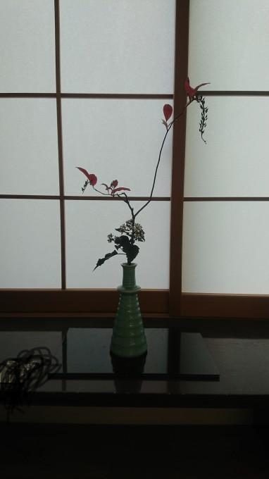 茶花展に行って来ました_f0035506_19322182.jpg