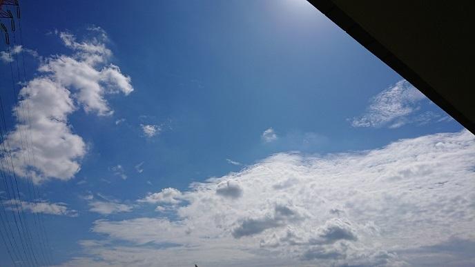 秋ですね、、、夏通り越してる更新_a0078020_11592376.jpg
