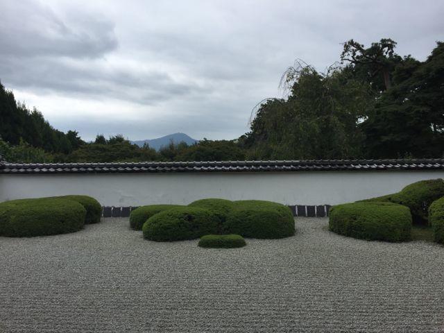 京都・正伝寺。_f0113224_01162422.jpg