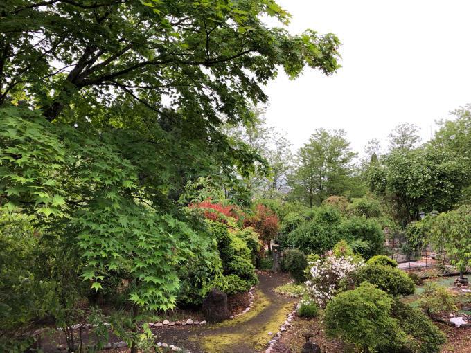庭園、エコフェスタ、クニマス未来館、旧池田氏庭園_b0093660_14061571.jpg