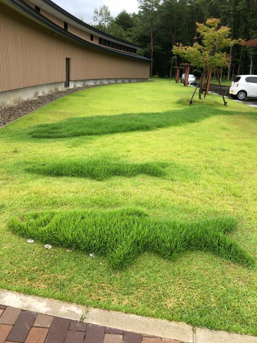 庭園、エコフェスタ、クニマス未来館、旧池田氏庭園_b0093660_15012966.jpg