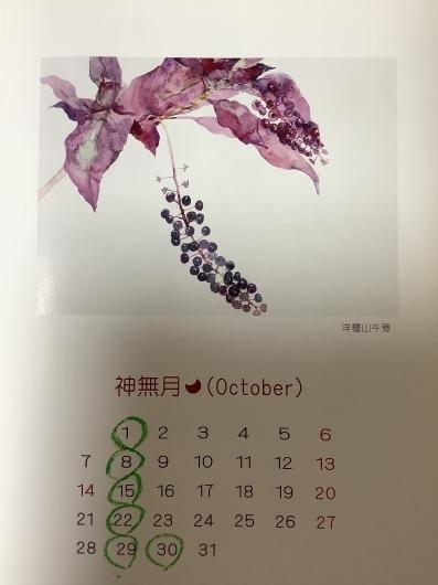 2019年10月の定休日_b0246670_11482405.jpeg