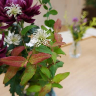 オークリーフ(絵画教室の花5)_f0049672_18182211.jpg