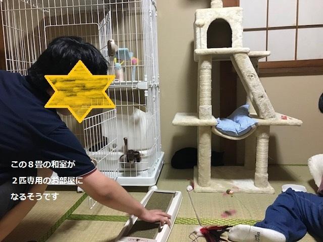 夏子ちゃん&空太くん 新生活スタート!_f0242002_07510602.jpg
