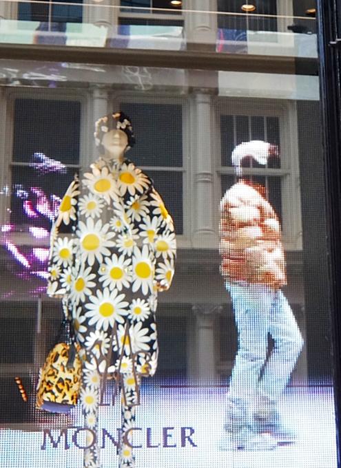 SOHOのお店のショウウィンドウで見かけたお花デザイン_b0007805_06552891.jpg