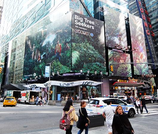 タイムズ・スクエアにBig Tree Seekers(大きな木を探す人々)の巨大看板_b0007805_23201932.jpg