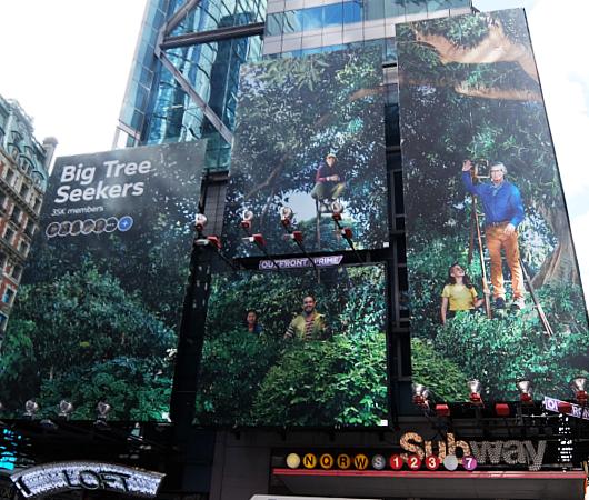 タイムズ・スクエアにBig Tree Seekers(大きな木を探す人々)の巨大看板_b0007805_23204616.jpg