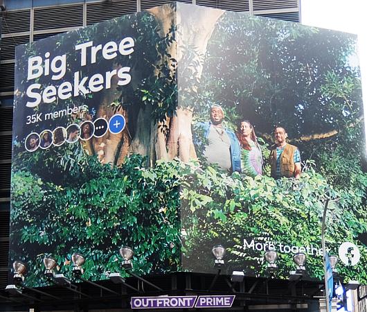 タイムズ・スクエアにBig Tree Seekers(大きな木を探す人々)の巨大看板_b0007805_23210108.jpg