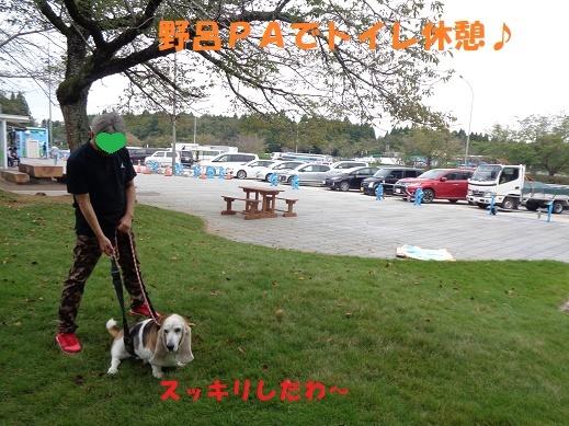f0121712_22435643.jpg